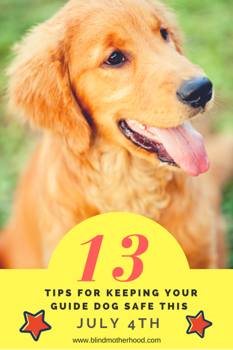 13 Tips For Keepign Your Guide Dog Safe This July 4th