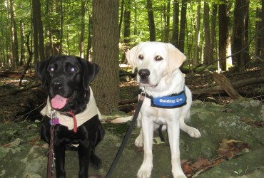 Guiding Eyes For the Blind – Puppy Raiser Profiles – Ito & the Cross Family