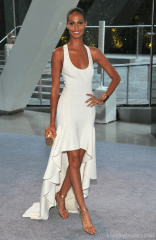 Model Joan Smalls attends the 2012 CFDA Fashion Awards at Alice Tully Hall on June 4, 2012 in New York City