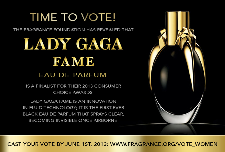 lady gaga fame time to voite