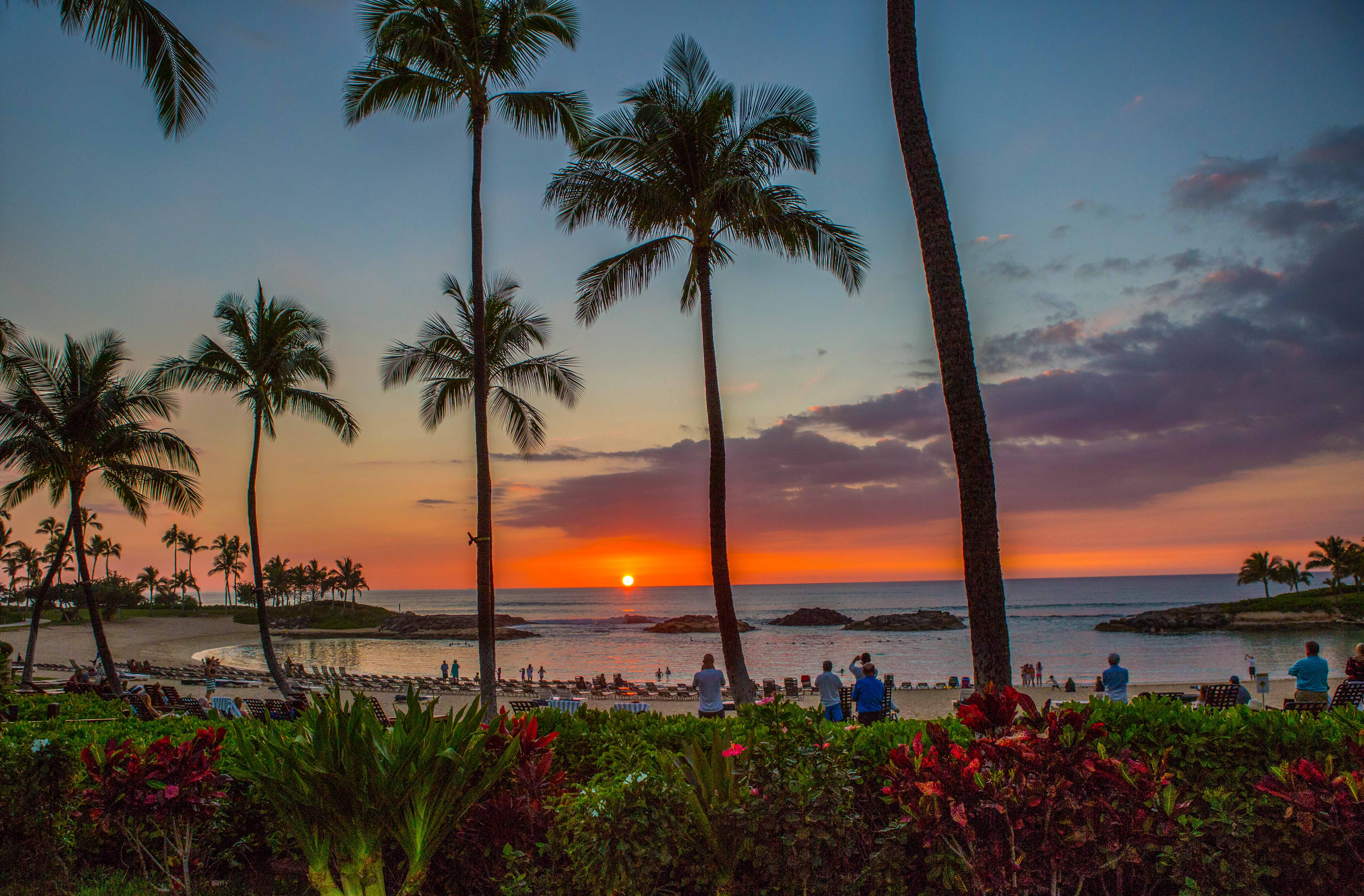 Hawaii Photographers Just Want To Have Fun