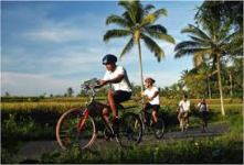 ubud_cycling