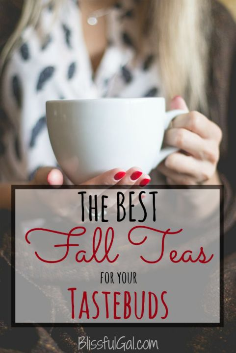 The BEST Fall Teas for Your Tastebuds. With Fall in the air, how can you not love these teas?!