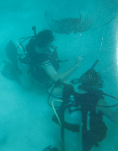 A male and a female scuba diver, under water, with stingrays swimming around. I wasn't scared (but maybe cautious).
