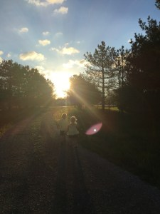 Two children, holding hands, walk into the sunset down a gravel driveway.