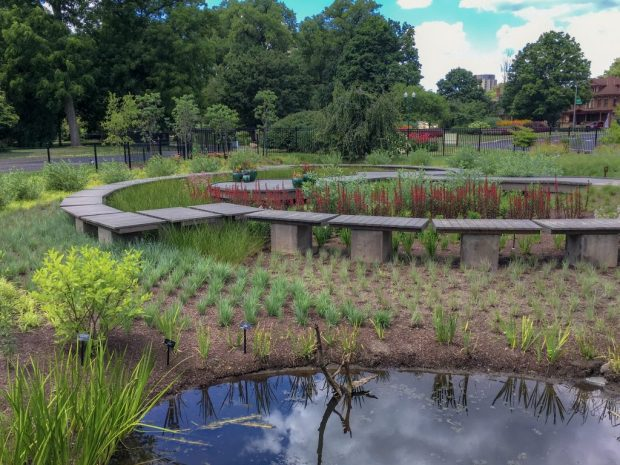 A small pond in the foreground and a wooden boardwalk in the background at Franklin Park Conservatory Children's Garden