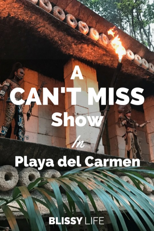 A CAN'T MISS Show In Playa del Carmen