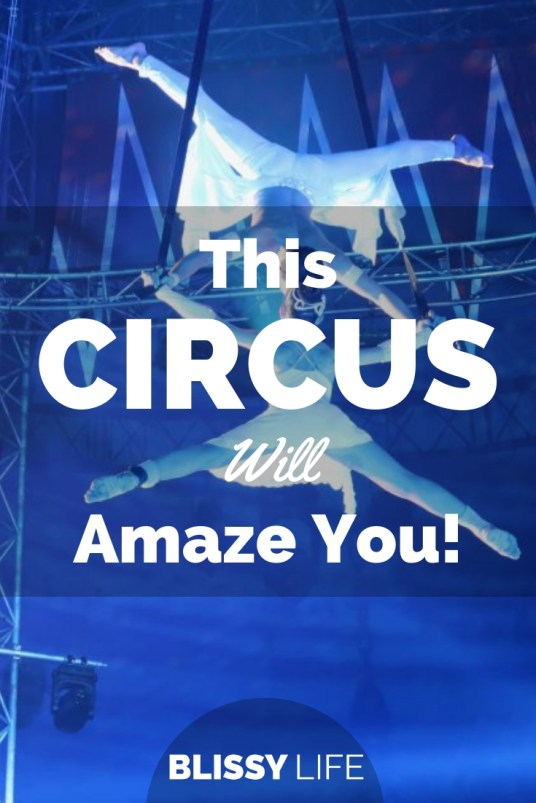 This CIRCUS Will Amaze You!