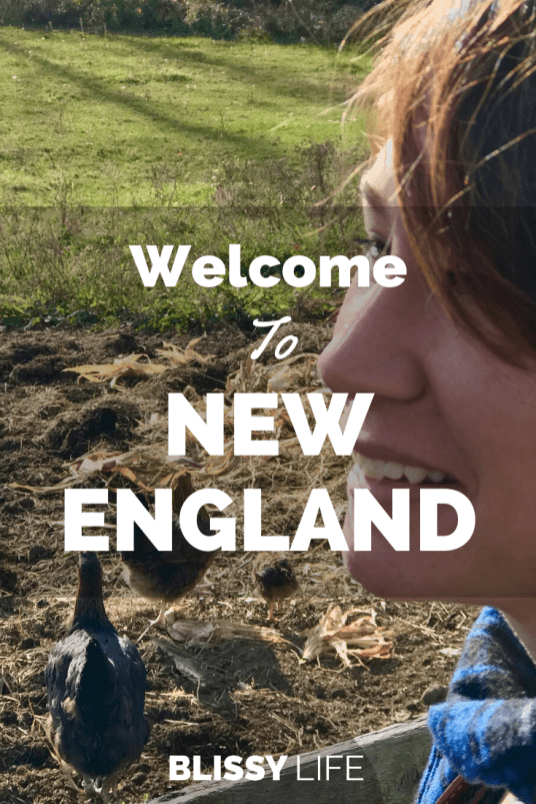 Welcome To NEW ENGLAND