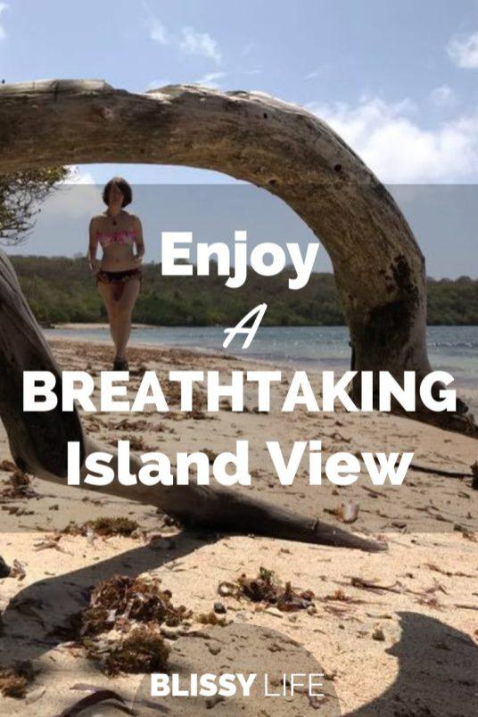 Enjoy A BREATHTAKING Island View