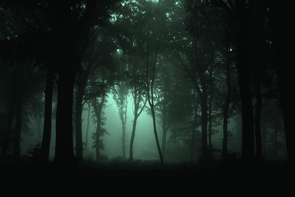 Gloomy_Forest