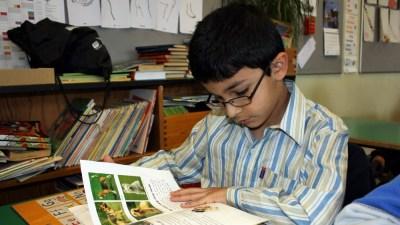 Koncentreret elev