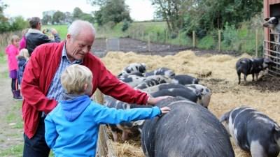 To generationer klapper grise