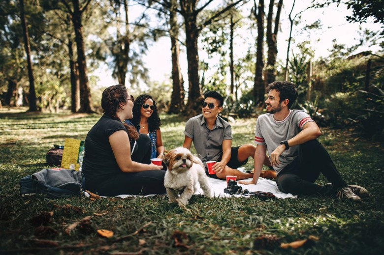 people having a picnic with a dog in a park