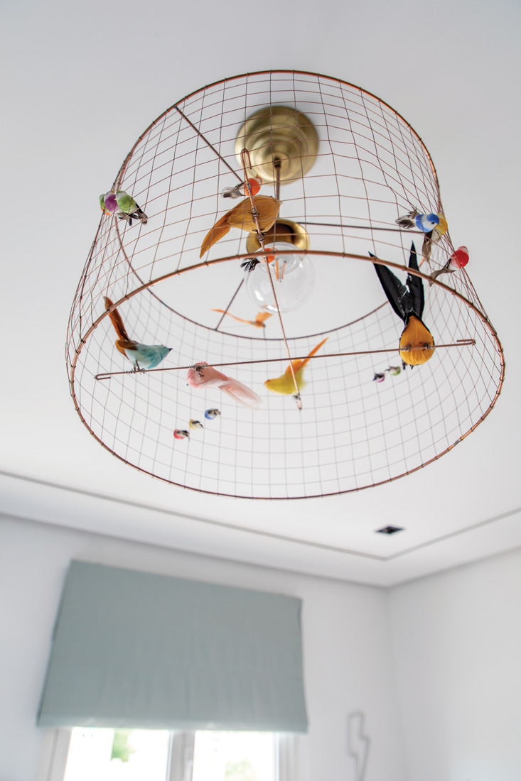 Bird cage, ceiling light cover