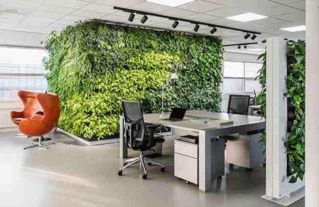 A large plant wall in an office space