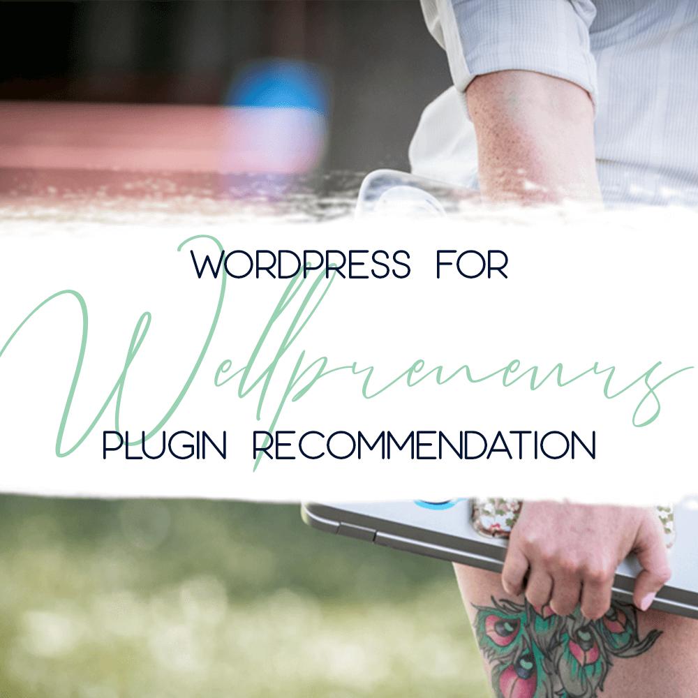 wordpress for wellpreneurs plugin mb spirit