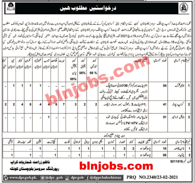 Agriculture Department Crop Reporting Services Balochistan Jobs 2021