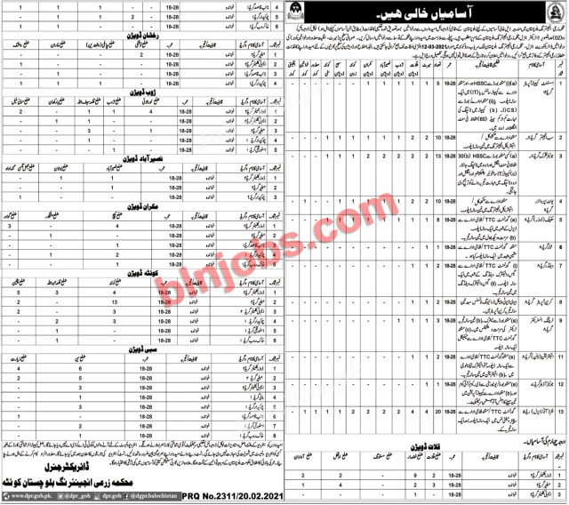Agriculture Engineering Department Balochistan Jobs Application Form