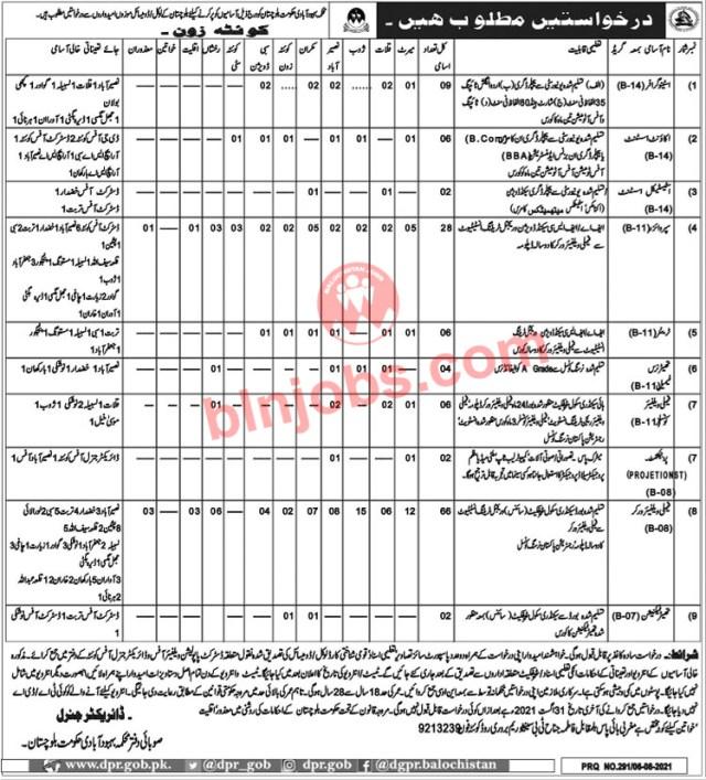 Population Welfare Department Balochistan 2021 - Application Form
