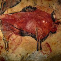 Bisonte de Altamira (Anónimo)
