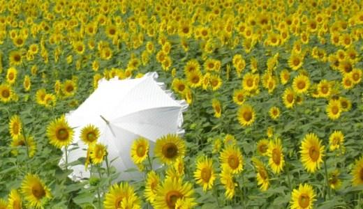 【紫外線が強い・紫外線対策・日傘・日差しが強い】を英語で?夏の英語表現⑥