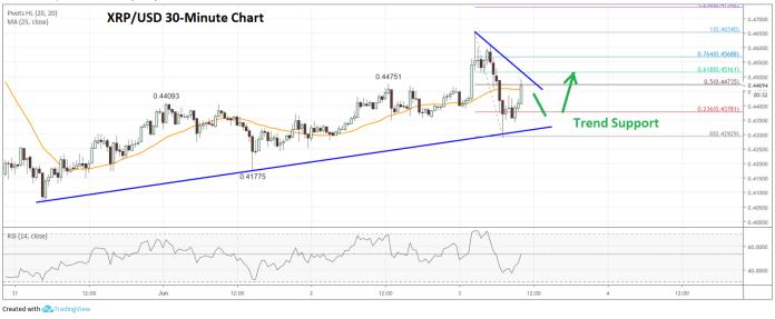 Ripple Price Analysis (XRP to USD)