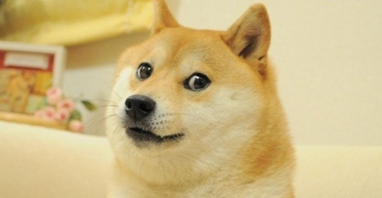 Dogecoin Quits Underdog-ing