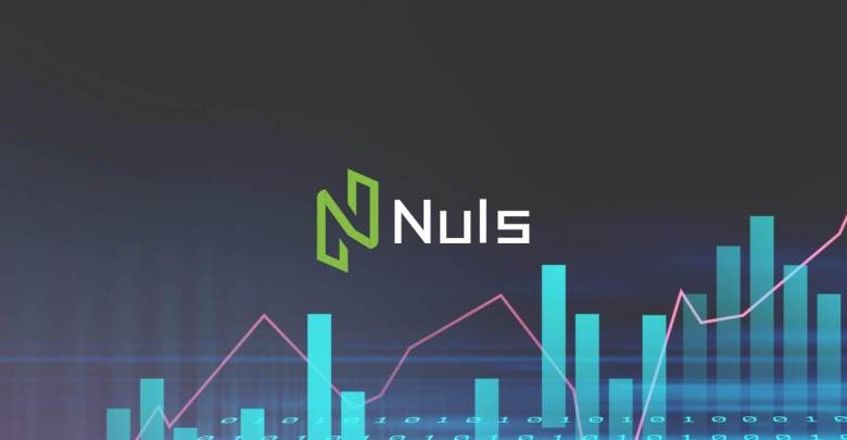 Nuls - The Adaptable Blockchain That Your Business Needs