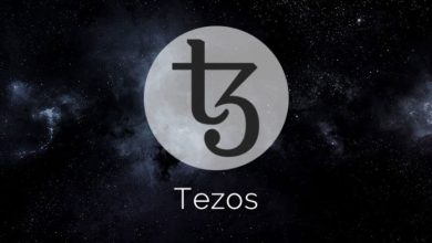 Tezos: The Self Evolving Blockchain Platform