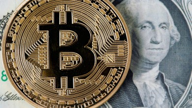 Bitcoin Price Should be About $10 Million - If All BTC Were Mined