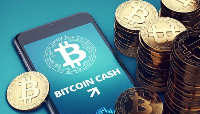 Bitcoin Fork Bitcoin Bash Became a Necessity
