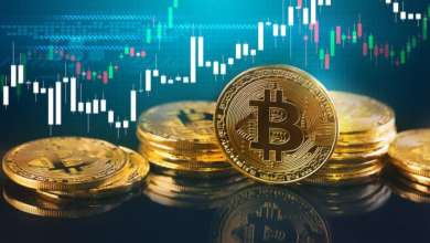 Will Bitcoin Derive its Value from its Use as a Medium of Exchange?