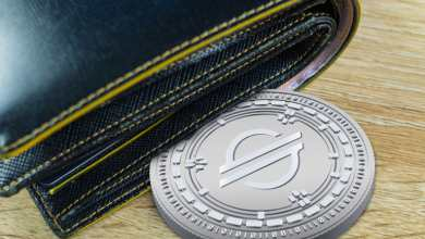 Stellar Wallet A Convenient Online Wallet for Everyday Use of You