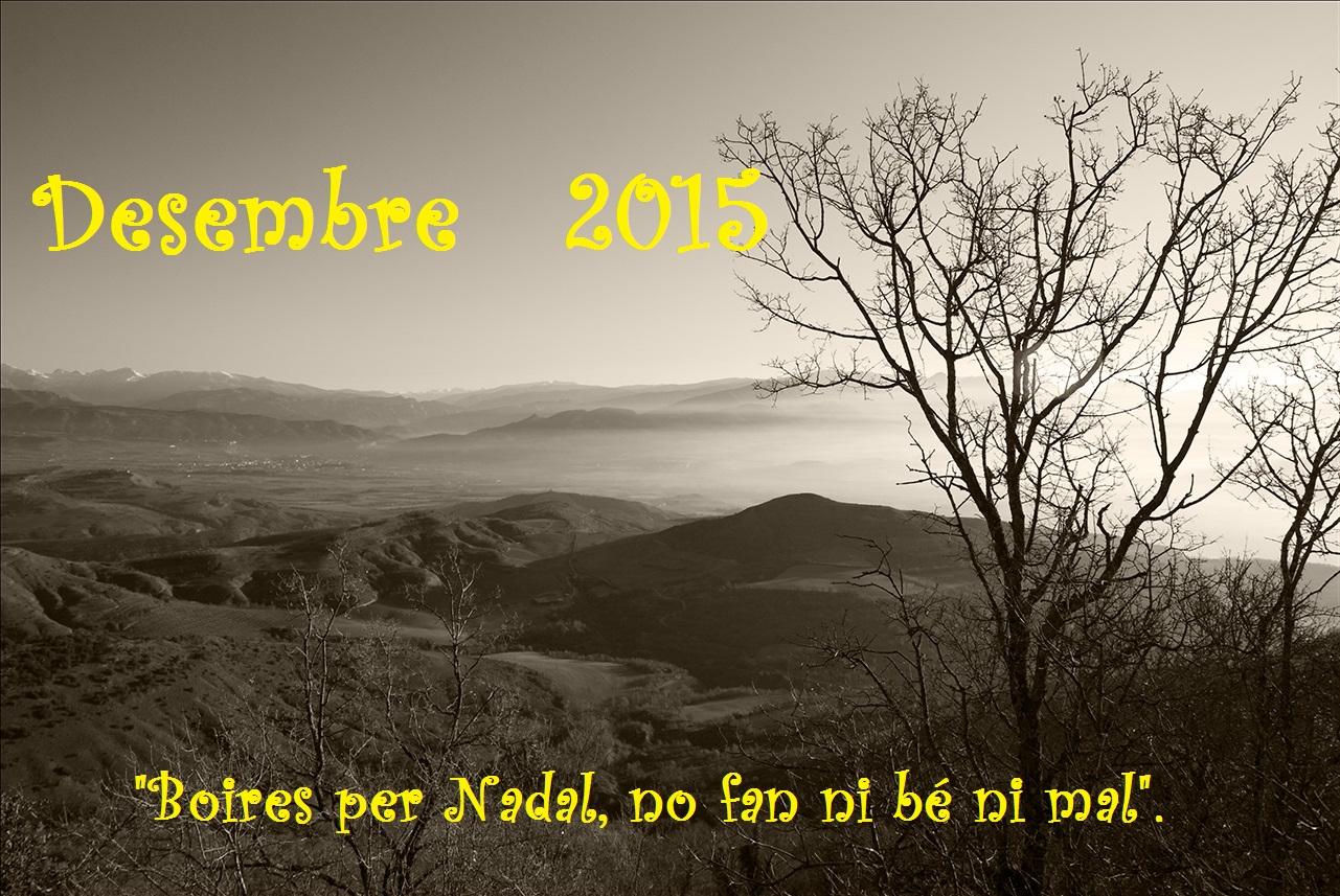 """""""Boires per Nadal, no fan ni bé ni mal"""" (meteorresum de Desembre, 2015)."""