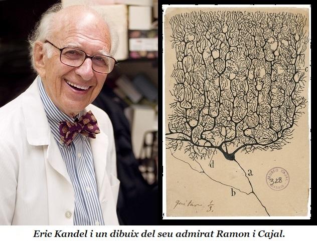 Eric R. Kandel: una atzarosa vida per a cercar les molècules de la memòria, la capacitat humana essencial per a la continuïtat i l'evolució de la nostra identitat.