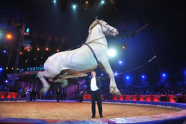 La prohibició dels circs amb animals a Catalunya s'ajorna fins almenys l'any 2017