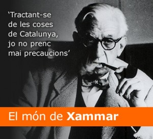 p_xammar00