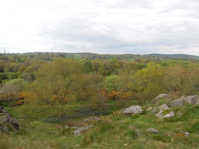 Southern View from Alter Stones