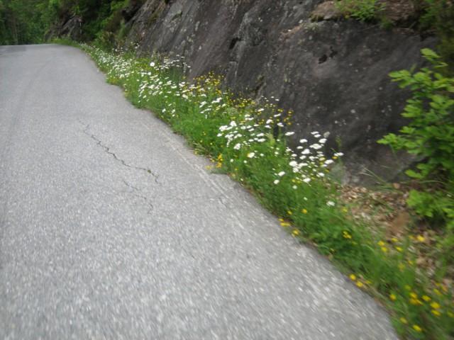 sykkeltur_042