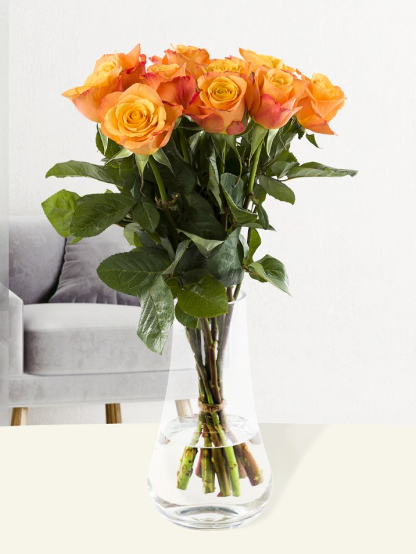 10 Orange Rosen - Confidential   Rosenstrauß online bestellen   Rosenversand Surprose.de