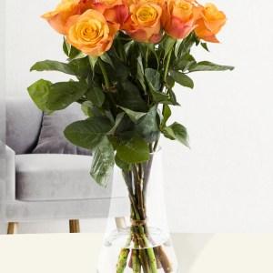 10 Orange Rosen - Confidential | Rosenstrauß online bestellen | Rosenversand Surprose.de