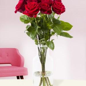 10 Rote Rosen - Red Naomi | Rosenstrauß online bestellen | Rosenversand Surprose.de
