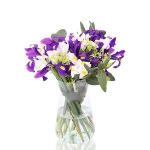 Brievenbusboeket Iris