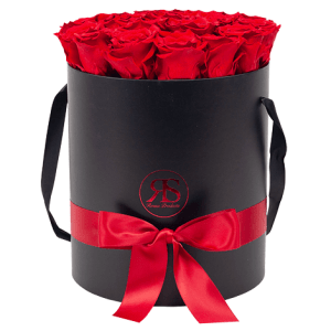 Flowerbox Longlife Aisha rot