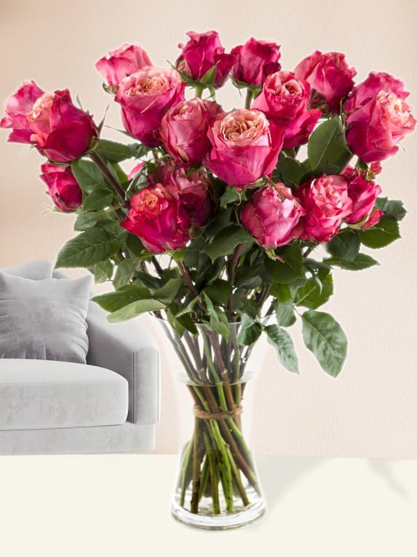 20 roze rozen uit Ecuador  Rozen online bestellen & versturen   Surprose.nl