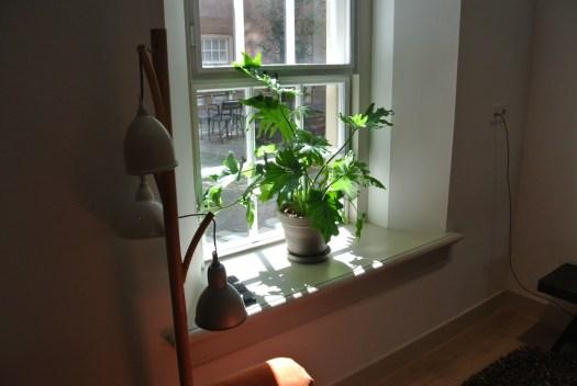 Een hotelgast die van planten houdt vind het ook fijn om iets te hebben om voor te zorgen tijdens het verblijf. Dat doen ze thuis ook. Maar Bloemen op Locatie blijft altijd aanspreekbaar op de kwaliteit van de planten.
