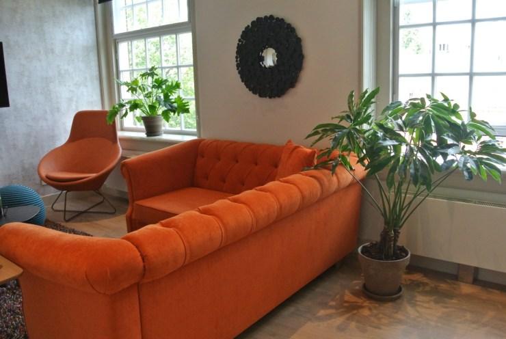 Planten in een hotelkamer maken het lekker huislijk en warm.