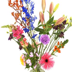 Moederdag pluk bloemen bezorgen bestellen of bezorgen