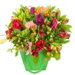 Alstroemeria in gift tas bestellen of bezorgen